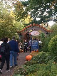 New York Botanical Garden Pumpkin Carving by Pumpkin Zombies Rhan U0027s Dan