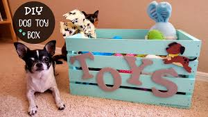 Diy Dog And Cat Treats by Diy Dog Toy Box Dog Mom Days