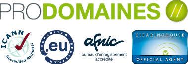 bureau d enregistrement nom de domaine les accents acceptés dans les noms de domaine en co