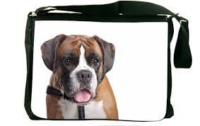 boxer dog on motorcycle amazon com rikki knight boxer dog design messenger bag shoulder