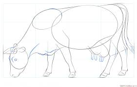 how to draw a cow step by step drawing tutorials