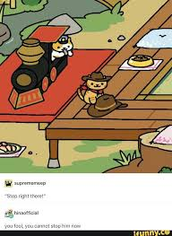 Meme Neko - 152 best neko atsume images on pinterest neko atsume funny