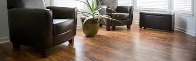 Beaulieu Canada Laminate Flooring Cedar Tree Flooring Home
