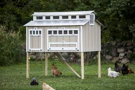 unique backyard chicken coop kit architecture nice