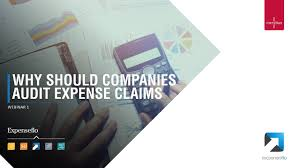Expense Report Audit by Why Should Companies Audit Expense Claims Expenseflo Youtube