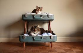Cat Bunk Bed 10 Trendy Upcycled Cat Beds Iheartcats
