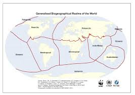 Philippines On World Map by Foundation For The Philippine Environment Researches