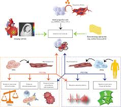 stem cell regenerative therapy for cardiovascular disease stem
