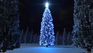 blue christmas blue christmas tree wallpaper 14683 open walls