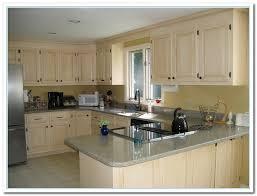 painted cabinet ideas kitchen great kitchen color cabinets ideas 38 remodel with kitchen color