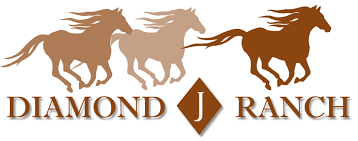 mustang horse logo home diamond j ranch