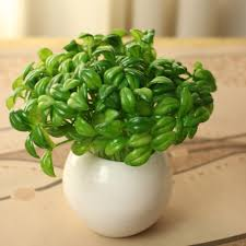 Green Table Gifts by Compare Prices On Green Plastic Tables Online Shopping Buy Low