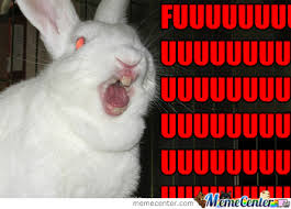 Angry Bunny Meme - angry bunny by paranoid rabbit meme center