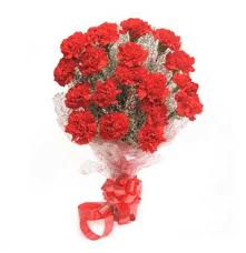 Red Carnations Red Carnation Bouquet