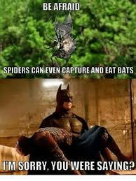 Afraid Of Spiders Meme - be afraid spiders can even capture and eat bats im sorry you were