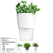 Self Watering Vase Eva Solo Self Watering Herb Pot Relaxtribe