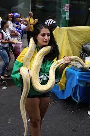 Yellow Flag With Snake Potbig Jpg