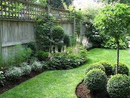 Budget Backyard Landscaping Ideas Best 25 Fence Landscaping Ideas On Pinterest Privacy Fence