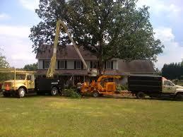 home carolina tree company