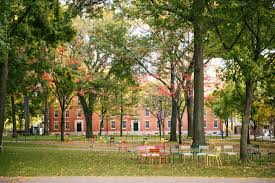 Harvard Campus Map Harvard Campus Wood Sources Harvard College Trees Old Harvard