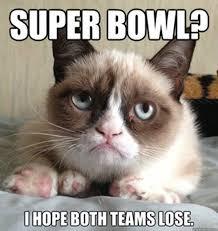 Grumpy Cat Meme Happy - 9 best grumpy cat memes skinny ms 盪 make me happy