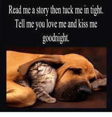 Kiss Me Dog Meme - read me a story then tuck me in tight tell me vou love me and kiss