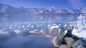 Awesome Wallpaper Bing Wallpapers Awesome Wallpapers