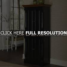 Corner Kitchen Storage Cabinet by Free Standing Corner Cabinets For Kitchen Tehranway Decoration
