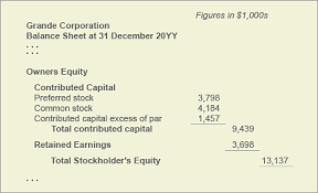 owners equity net worth balance sheet book value explained