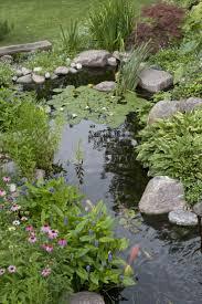 Small Backyard Pond Ideas Garden Design Pond Kits Backyard Ponds And Waterfalls Fish Pond