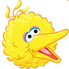 best 25 big bird ideas on sesame birthday