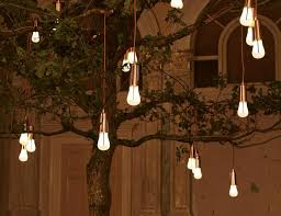 plumen unveils gorgeous glowing oak installation at the
