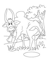 free farm animal coloring pages 81 best domestic animals coloring pages images on pinterest