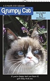 Grumpy Cat Mini Wall Calendar - 2018 grumpy cat mini calendar day dream day dream 9781682099575