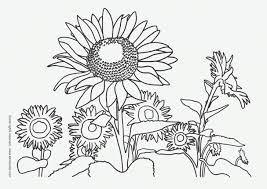 Photos Coloring Mandala Patterns To Color In Sunflower Mandala Sunflower Coloring Page