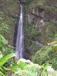 imagenes de sud yungas cascadas camino a sud yungas bolivia mapio net