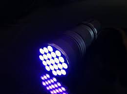 amazon com aor flashlights uv blacklight led flashlight sports amazon com aor flashlights uv blacklight led flashlight sports outdoors