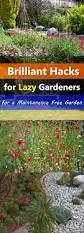 low maintenance easy landscaping tips for a low maintenance garden balcony