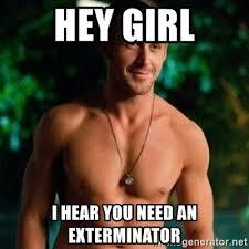 Exterminator Meme - hey girl i hear you need an exterminator hey girl ryan gosling