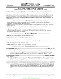 Example Of Manager Resume by Core Competencies Resume Examples Berathen Com
