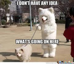 Confused Dog Meme - i m confus by redberserk2 meme center