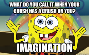 Crush Memes - what do you call it when your crush has a crush on you