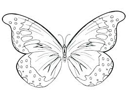 coloring page butterfly monarch butterfly life cycle coloring page butterflies monarch butterfly