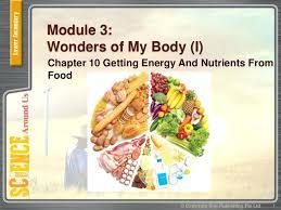 module cuisine rennes module cuisine module cuisine 1 plateau module cuisine rennes