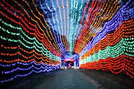 Zoo Lights Houston by Texas U0027 Best Christmas Light Displays Houston Chronicle