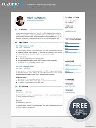 Resume Template One Page 126 Best Classic Resume Templates Images On Pinterest Free