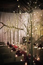 hire light up birch trees