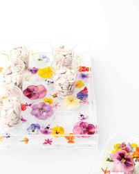 how to make a flower ice tray martha stewart weddings