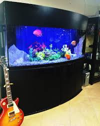 Reef Aquascape Designs Gallery Freshwater Livestock Exotic Reef Designs