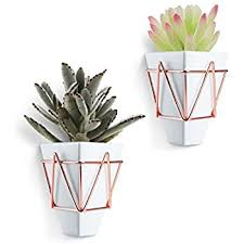 Geometric Hanging Planter by Amazon Com Kate And Laurel Tain Metal Wall Hanging Planter With 3